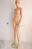 Манекен женский в полный рост разборный , фото 1