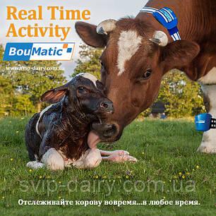 Система определения охоты BouMatic RealTime Activity, фото 2