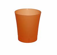 Орхідейниця ОРХІДЕЯ 125 помаранчевий прозорий, пластик