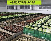 Вентиляция/кондиционирование овощехранилищ