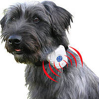 Ошейник антилай Bark Control Dog Collar ультразвуковой