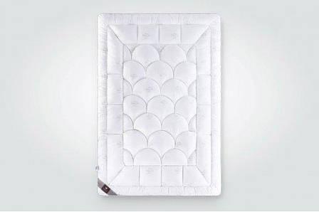 Одеяло зимнее ИДЕЯ Super Soft Classic 140*210, фото 2