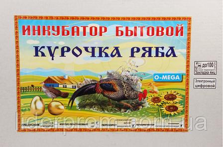 Инкубатор Курочка Ряба ИБ-100 механический переворот 100 яиц в пластике, фото 2