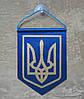 Вымпел Украины | Вимпел України 9х6.5 см