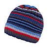 Демисезонная шапка для мальчика TuTu арт. 3-002508(46-50, 50-54)