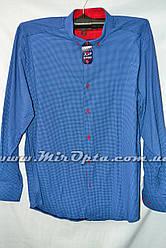 Рубашка мужская (L - 3XL) купить оптом со склада