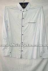 Рубашка мужская (M - 3XL) купить оптом со склада