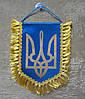 Вымпел Украины | Вимпел України 16х11 см с бахромой | з бахромою
