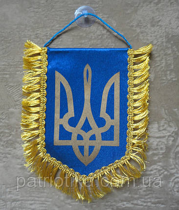 Вымпел Украины | Вимпел України 16х11 см с бахромой | з бахромою, фото 2