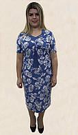 Блакитна жіноча сукня № 129, Р. 54-62