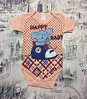 Боди детские оптом (62-86 см Турция) купить со склада в Одессе 7 км