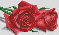 Набор для рукоделия Пара красных роз (22х37см)