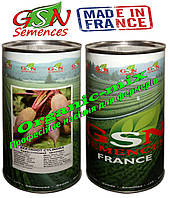 Свекла ЦИЛИНДРА / CYLINDRA ТМ GSN Semences (Франция) фермерская упаковка банка 500 грамм
