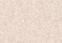 Виниловые, горячено тиснения обои флизелиновая основа 10,05 х 1,06 СШТ ТУЛУЗА 1 0878,2сорт.
