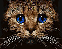 """Набор для рисования """"Кошачий взгляд"""" 40х50см, Без Коробки"""
