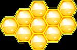 Выставка-конференция по пчеловодству в г.Днепр 17 марта 2018 г.