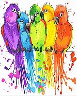 "Набор для рисования ""Радужные попугайчики"" [40х50см, Без Коробки]"
