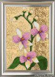 Ткань с рисунком для вышивки бисером Орхидея. Винтаж 2 (триптих)