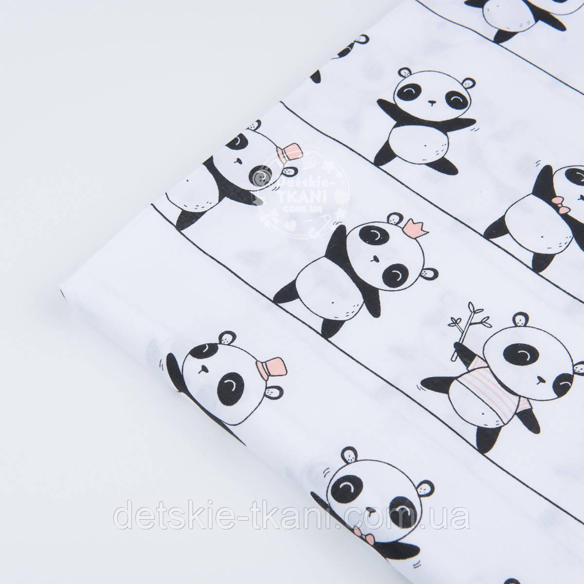 """Лоскут ткани """"Панды на линиях"""" на белом фоне  №1227а"""