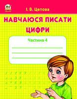 Прописи: 4+Навчаюся писати цифри укр. /50/(Талант)