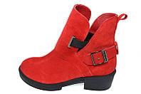 Ботинки замшевые Crisma 1817 Red, фото 1