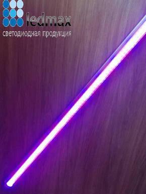 Фитосветильник для растений светодиодный флора 8W 60 см. Ledmax, фото 2