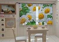 """Фото штора """"Белые ромашки в кухне"""" 150 х 250 см"""