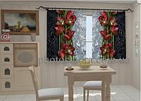 "Фото штора ""Капля красоты. Бордо для кухни"" 150 х 250 см"