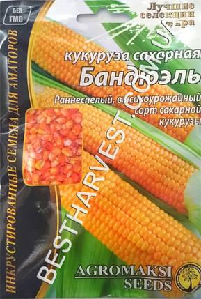 Семена кукурузы «Бандюэль» 20 г, инкрустированные, фото 2