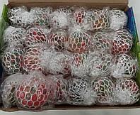 Лизун Мозги в сетке с гидрогелем, маленькие