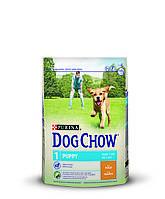 [ Корм для цуценят Dog Chow Puppy з куркою 14 кг ] Сухий корм Дог Чау  віком до 1 року