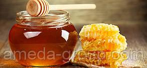 Продам мед натуральный, фото 3