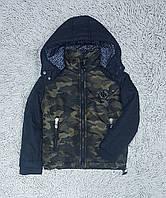 Детские куртки P Plein, фото 1