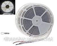 Светодиодная  LED лента 5050SMD 24V 60Led/m  20m White/IP67, фото 2
