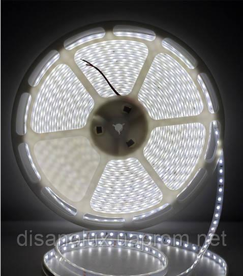 Светодиодная  LED лента 5050SMD 24V 60Led/m  20m White/IP67