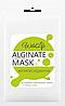 Альгинатная маска Антиоксидантная с Жемчужной пудрой TM WildLife , 180 г, фото 2