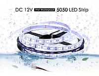 Светодиодная LED лента 5050SMD 12V 60Led/m  5m White/IP67