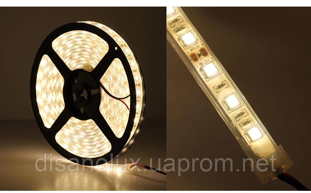 Светодиодная  LED лента 5050SMD 12V 60Led/m  5m Warm  White/IP67