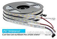 Светодиодная  LED лента 5050SMD 12V 60Led/m  5m Warm  White/IP67, фото 5