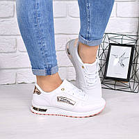 Кроссовки женские Moschino белый + пудра 4416, спортивная обувь