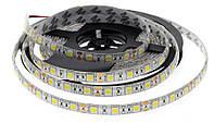 Светодиодная LED лента 5050SMD 24V 60Led/m  5m White/IP65