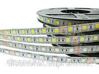 Светодиодная  LED лента 5050SMD 24V 60Led/m  5m Warm  White/IP65, фото 3