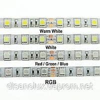 Светодиодная  LED лента 5050SMD 24V 60Led/m  5m RGBWW/IP65, фото 4