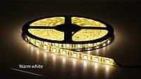 Светодиодная LED лента 5050SMD 24V 60Led/m  5m Warm  White/IP65