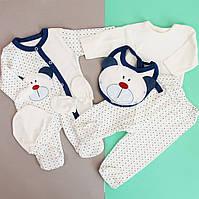 Одежда для новорожденного на выписку из роддома размер 0-3 мес