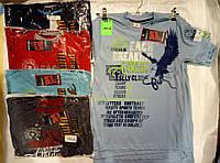 Футболка для мальчика на 9-12 лет серого,синего,красного цвета с надписью Орел оптом