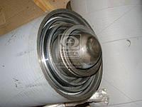 Цилиндр подъема платформы (гидроцилиндр) МАЗ  (пр-во Беларусь). 503А-8603510-03. Цена с НДС.