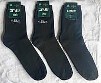Носки  махровые хб Житомир ™Универсал , фото 1