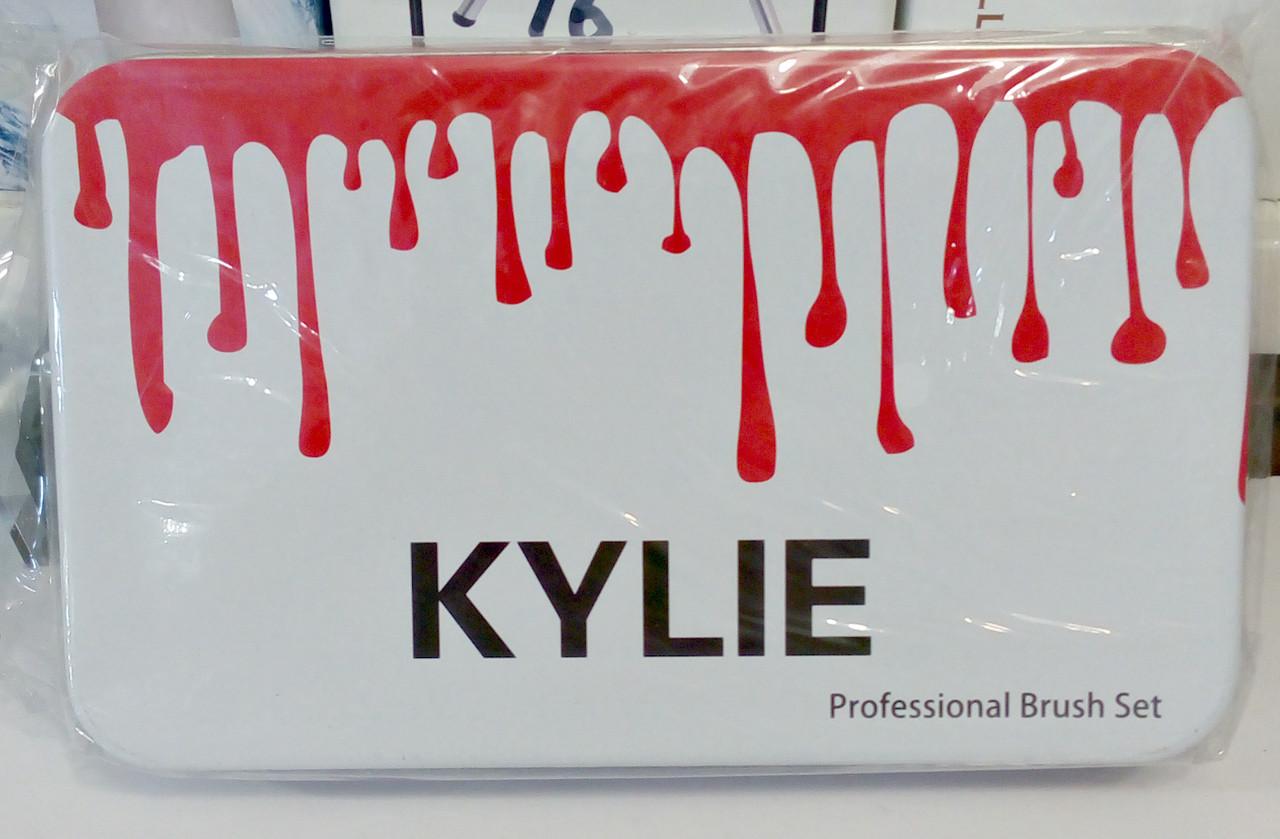 Набор кистей Kylie в металлическом контейнере, 12 шт