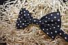Чоловіча краватка-метелик усипана зорями, сіра, фото 2